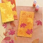 press-leaf-project9-2.jpg