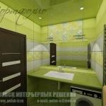 project49-green-bathroom13.jpg