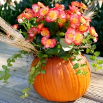 pumpkins-vase-new-floral-ideas2-3.jpg