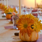 pumpkins-vase-new-floral-ideas5-3.jpg