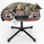 recycled-suitcase-ideas-pets-bed2.jpg