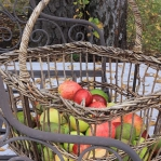 red-yellow-apples-autumn3.jpg