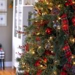 ribbon-on-christmas-tree-ideas13