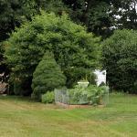 romantic-porch-show-tour-in-garden6.jpg