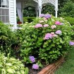 romantic-porch-show-tour-in-garden8.jpg