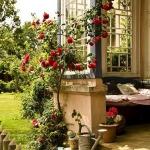 roses-in-garden-entrance2.jpg