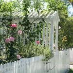 roses-in-garden-inspiration2-9.jpg