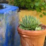 santa-cruz-landscape-designer3-5.jpg