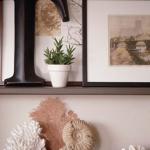 seashells-decor-ideas-easy3.jpg