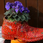shoes-container-garden1-7.jpg