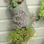shoes-container-garden2-1.jpg