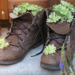 shoes-container-garden5-10.jpg