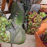 shoes-container-garden5-15.jpg