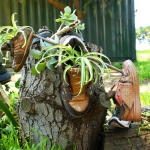shoes-container-garden5-2.jpg