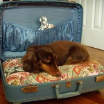 simple-diy-ideas-small-doggie-beds-in-suitcase4