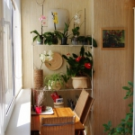 smart-russian-balcony-contest-by-ikea-plants3.jpg