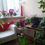 smart-russian-balcony-contest-by-ikea-plants4.jpg