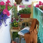 smart-russian-balcony-contest-by-ikea-plants9.jpg