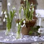 snowdrops-spring-decor-ideas1-8