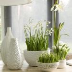snowdrops-spring-decor-ideas10-1