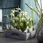 snowdrops-spring-decor-ideas4-1