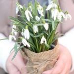 snowdrops-spring-decor-ideas4-4