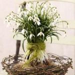 snowdrops-spring-decor-ideas5-4