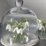 snowdrops-spring-decor-ideas6-2