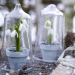 snowdrops-spring-decor-ideas6-3