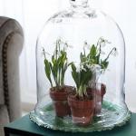 snowdrops-spring-decor-ideas6-4
