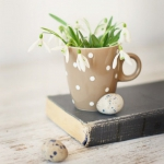 snowdrops-spring-decor-ideas7-6