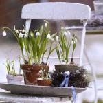 snowdrops-spring-decor-ideas9-2