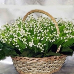 spring-decor-ideas-from-lily-of-the-valley-vases-style1-3