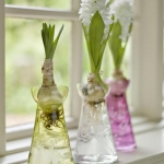 spring-flowers-new-ideas-hyacinths4.jpg