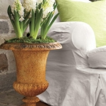 spring-flowers-new-ideas-hyacinths6.jpg