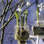 spring-flowers-new-ideas-snowdrops-and-crocus7.jpg