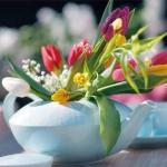 spring-flowers-new-ideas-tulip2-5.jpg