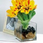 spring-flowers-new-ideas-tulip2-16.jpg