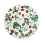 strawberry-season-dinnerware8.jpg