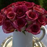 summer-afternoon-tea-in-garden3-12.jpg