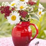 summer-flowers-fusion4.jpg