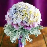 summer-flowers-variety10.jpg