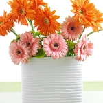 summer-flowers-variety8.jpg