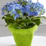 summer-flowers-vase10.jpg