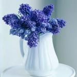 summer-flowers-vase3.jpg