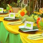 summer-outdoor-tablecloths-style4-2.jpg