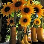 sunflowers-centerpiece-decorating-ideas-vase5-2
