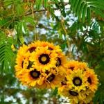 sunflowers-centerpiece-decorating-ideas4-2
