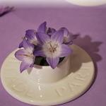 table-set-wild-fresia-details5.jpg