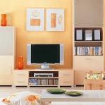 tv-furniture-and-decoration1-3.jpg